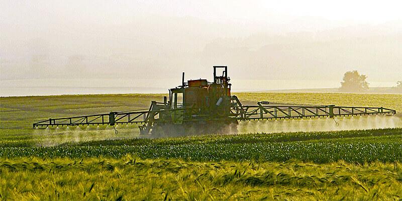 Traktor besprüht Getreidefeld